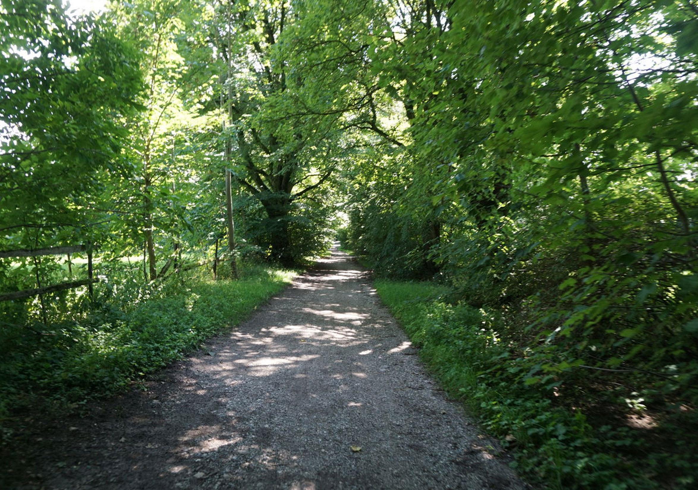 Bucher Weg