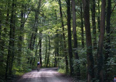 Fahrradweg Buch